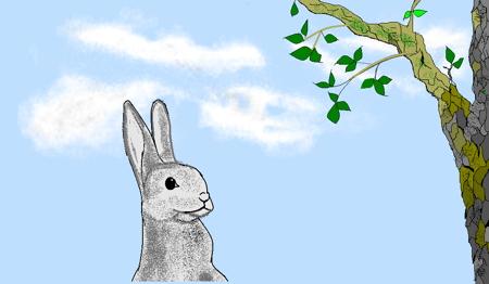 Rabbit, next to tree