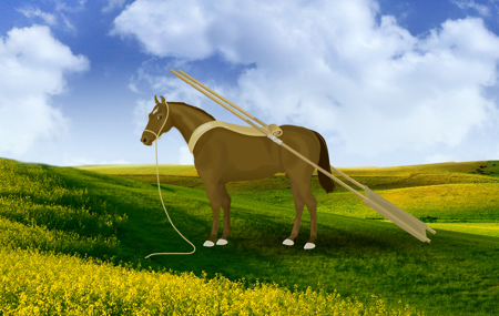 horse with travois