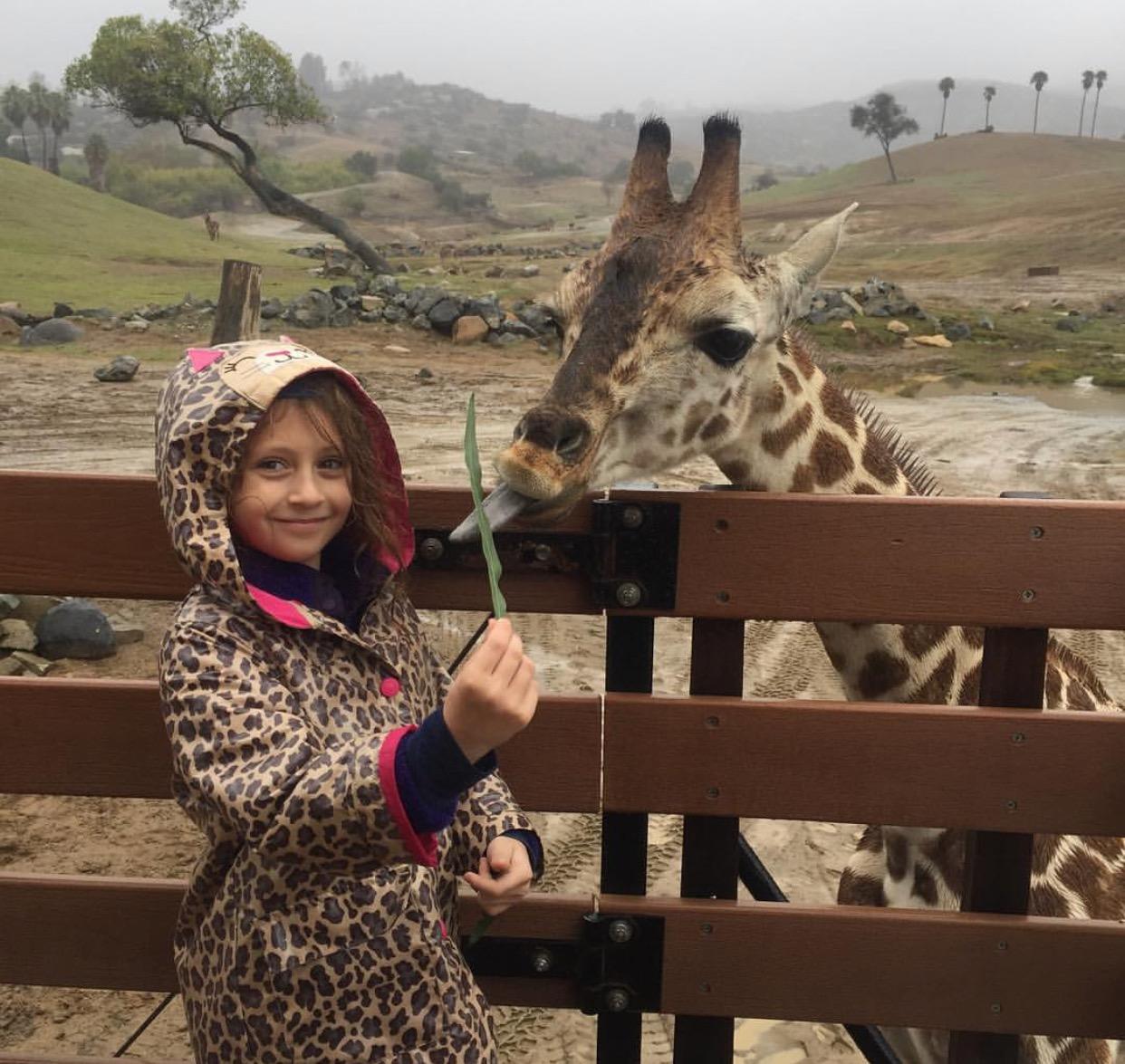 Eva feeding a giraffe